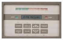security metal detector